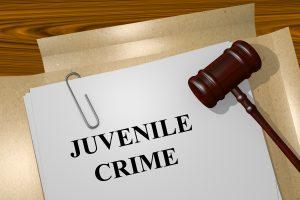 juvenile, arrest, conviction, crime, offense, restricted, restriction, sealed, expungement